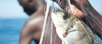 Overfishing, Climate Change and Hunger