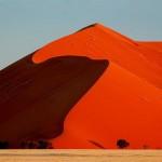 dsc_1370 Big Dune and trees, road to Sossusvlei, Namib Desert