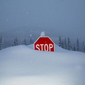 Snow 4 impakter.com