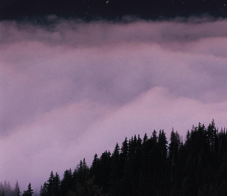 IMP-Fog&Mtn