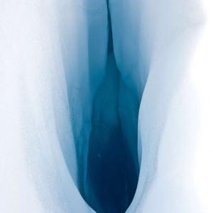 snow 22 impakter.com