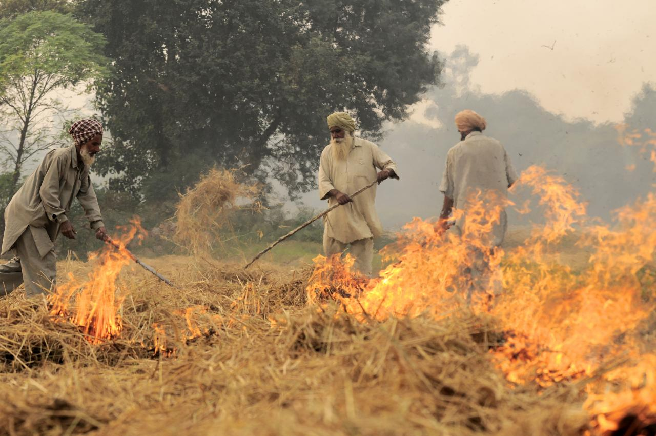 NP_India_burning_48_(6315309342)