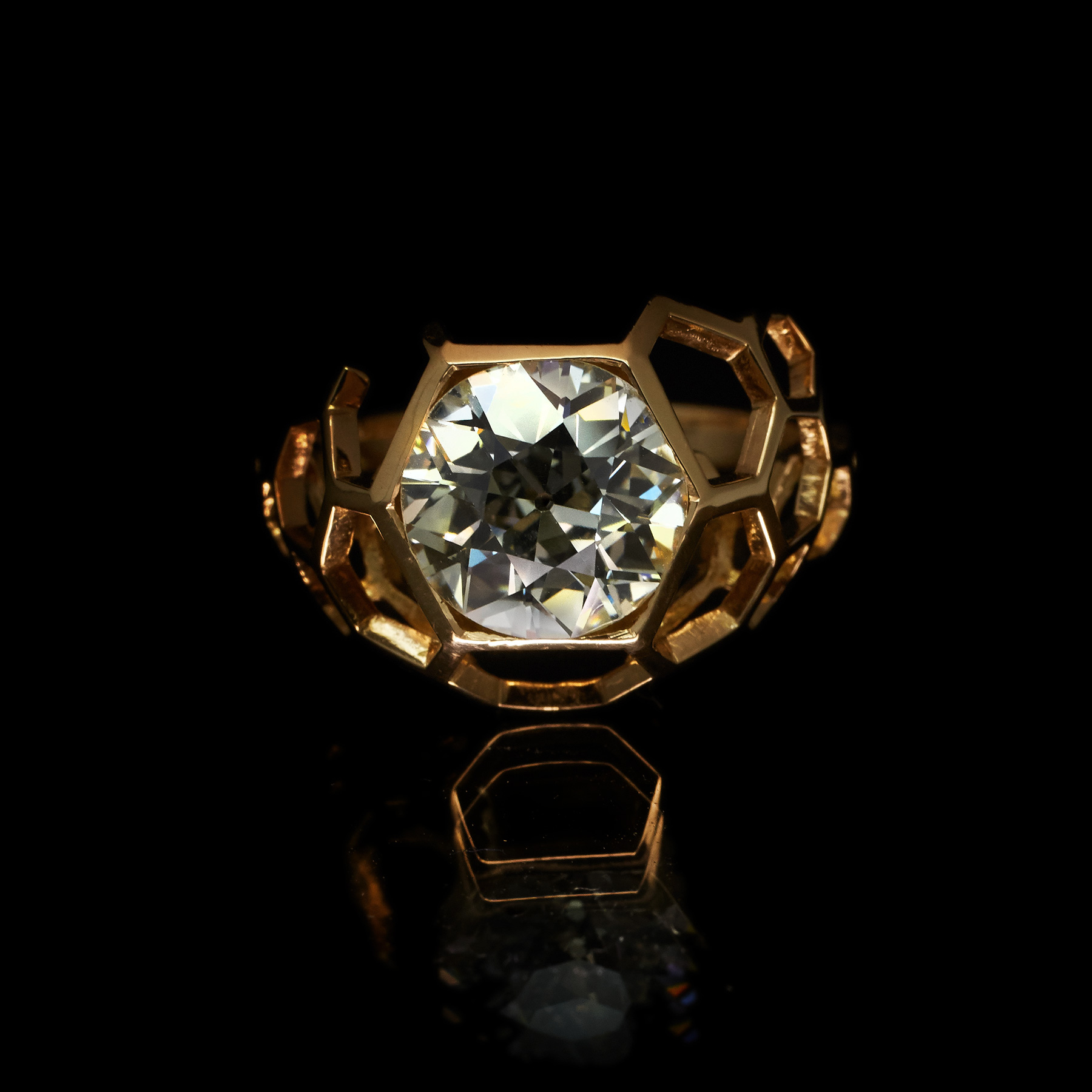 guyandmax_digital-nature_engagement_ring_7996-001
