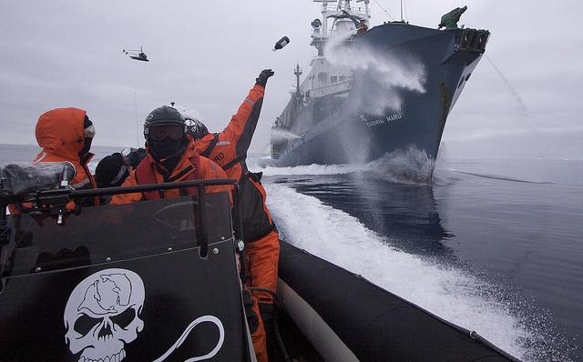 Crew hurls bottle at Japanese harpoon whaling ship. Credit: Flickr/John