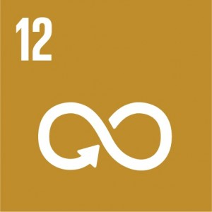 E_SDG_Icons_NoText-12