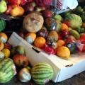 General views of food waste.