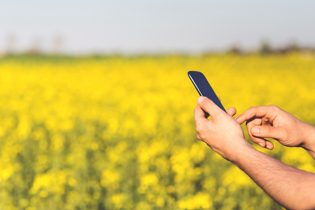 man-field-smartphone-yellow (1)