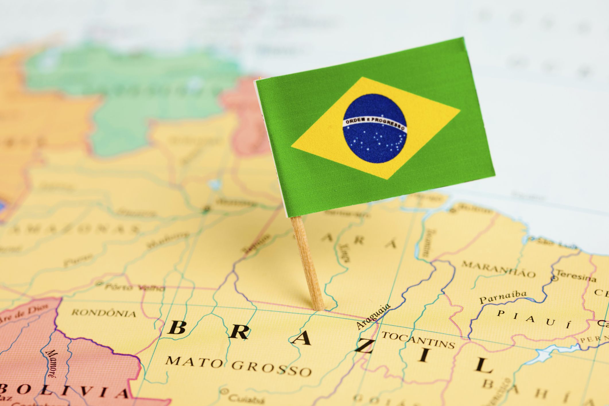 Brazil with Flag