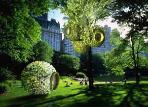 central-park-tree-farm