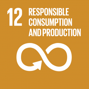 Sustainable consumption and production patterns: a new avenue for economic development