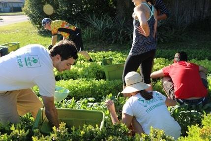 CASTRO_Fleet_Farming_achieves...SDGs_ (1)
