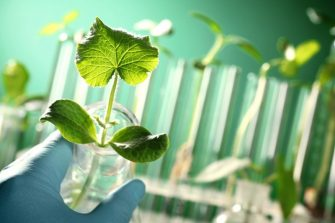 Building a Culture of Sustainability with MyGreenLab