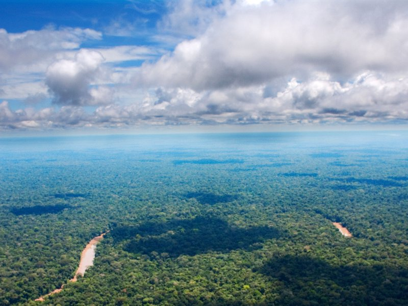 stop-the-destruction-of-the-ecuadorian-amazon