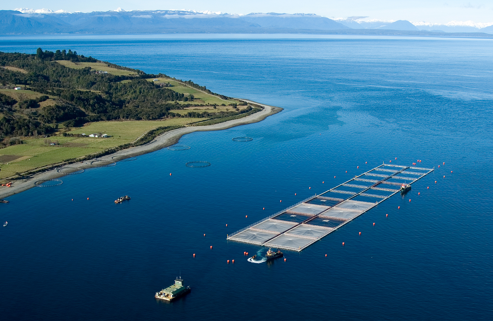 bigstock-Salmon-Cages-On-Islands-In-Sou-22812203