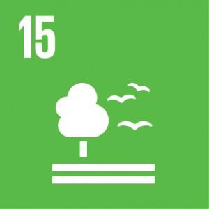 E_SDG_Icons_NoText-15