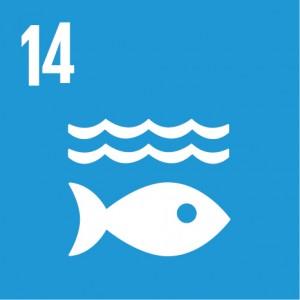 E_SDG_Icons_NoText-14