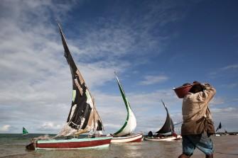 SDG 14: Growing Blue Oceans