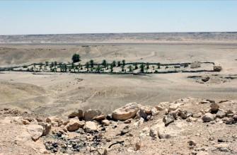 The Western Sahara Scandal: The Forgotten Emergency