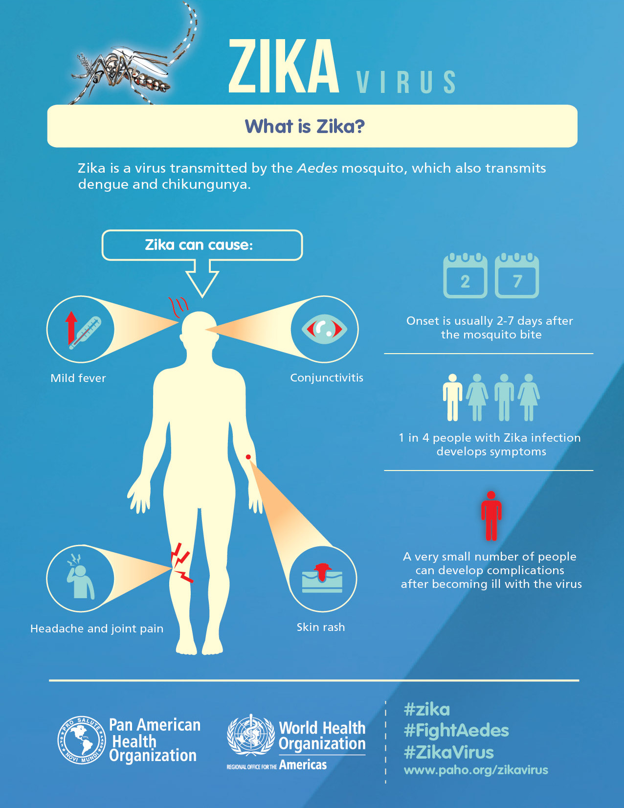 Zika Virus Highlights Flaws in Public Health Approaches in the ...