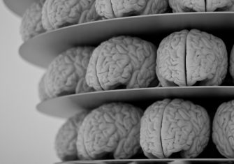 How I Came to Love My Damaged Brain