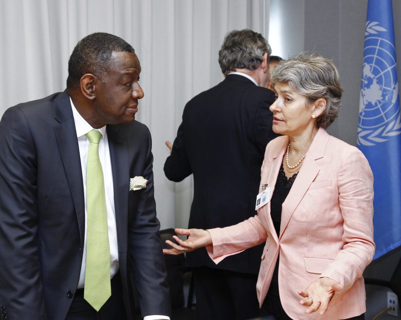 """Meeting - High-Level Steering Committee of """"Education First"""" Present: -Irina Bokova, UNESCO Director-General -Babatunde Osotimehin, UNFPA Executive Director -Gordon Brown, United Nations Special Envoy for Global Education, and former Prime Minister of the UK"""