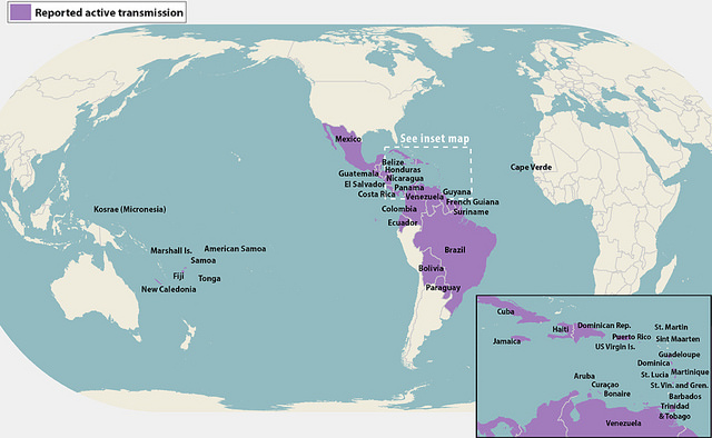 Countries that have active Zika virus transmission as of April, 2016.