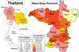thailand-khon kaen-precipitation-sdg6-ov