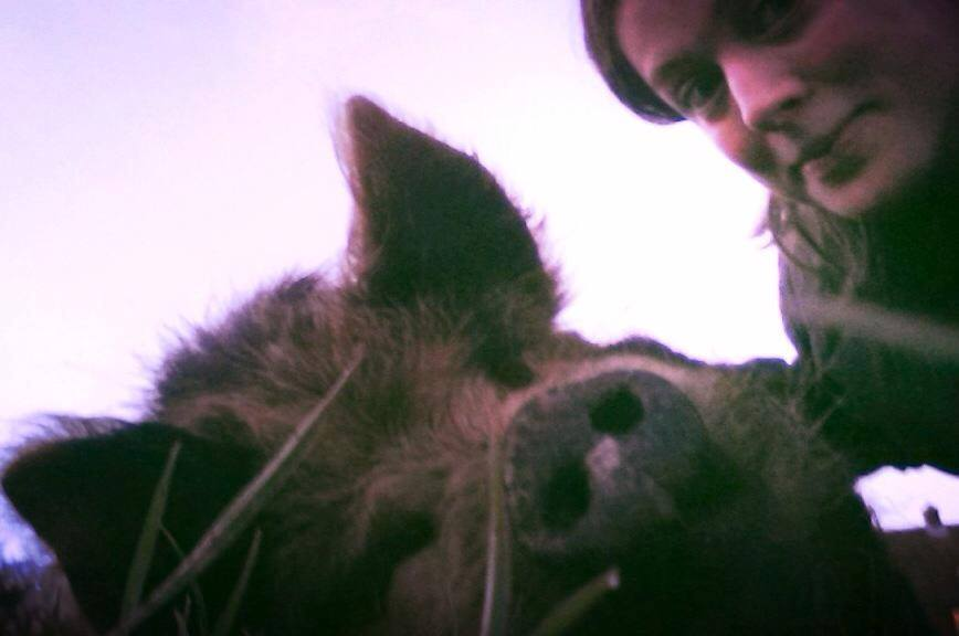 The poet and the pig