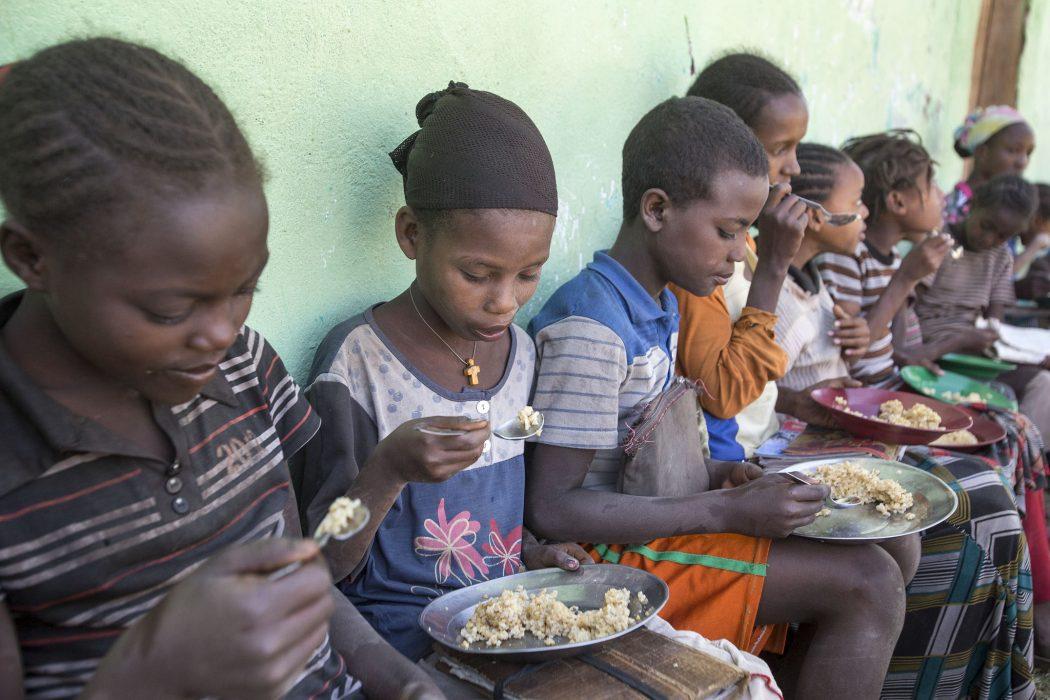 fao-food-security-africa-trust-fund-fao