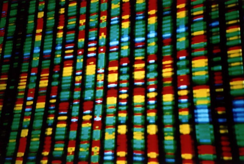 dna-representation-bioethics-human-genome