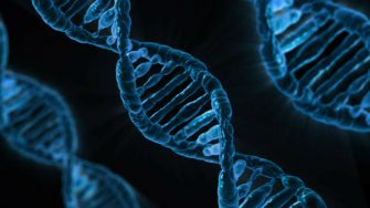 Surreptitious Genetic Testing: Fact or Fiction?