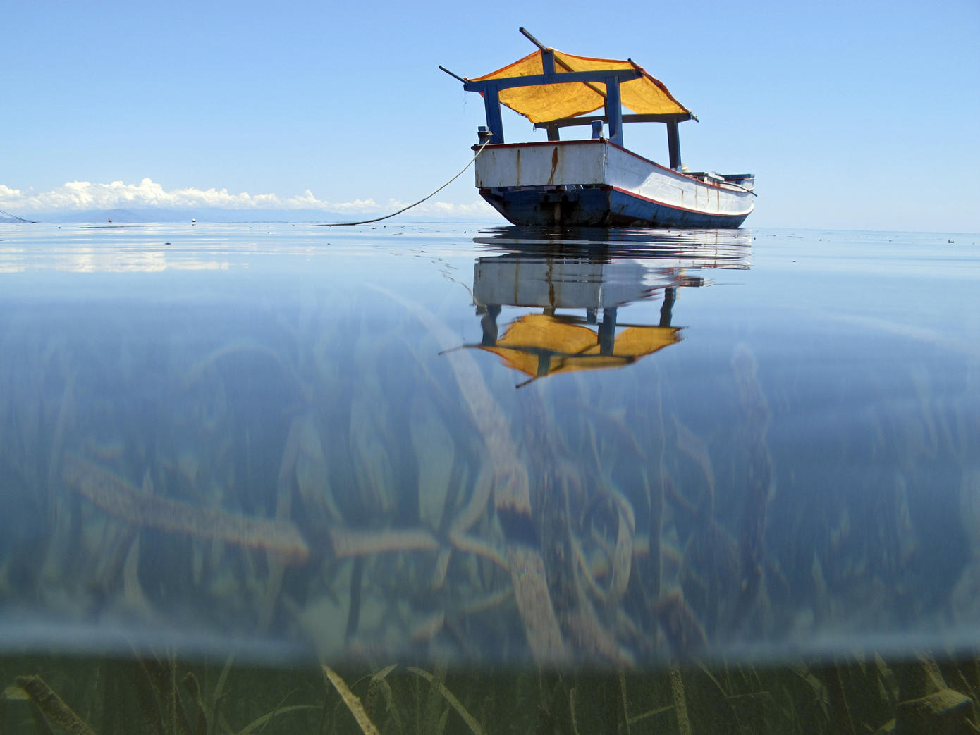 fishing-world-water-day