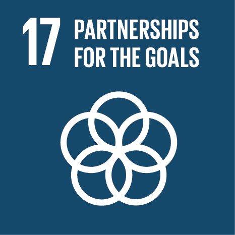 SDG-logo-17