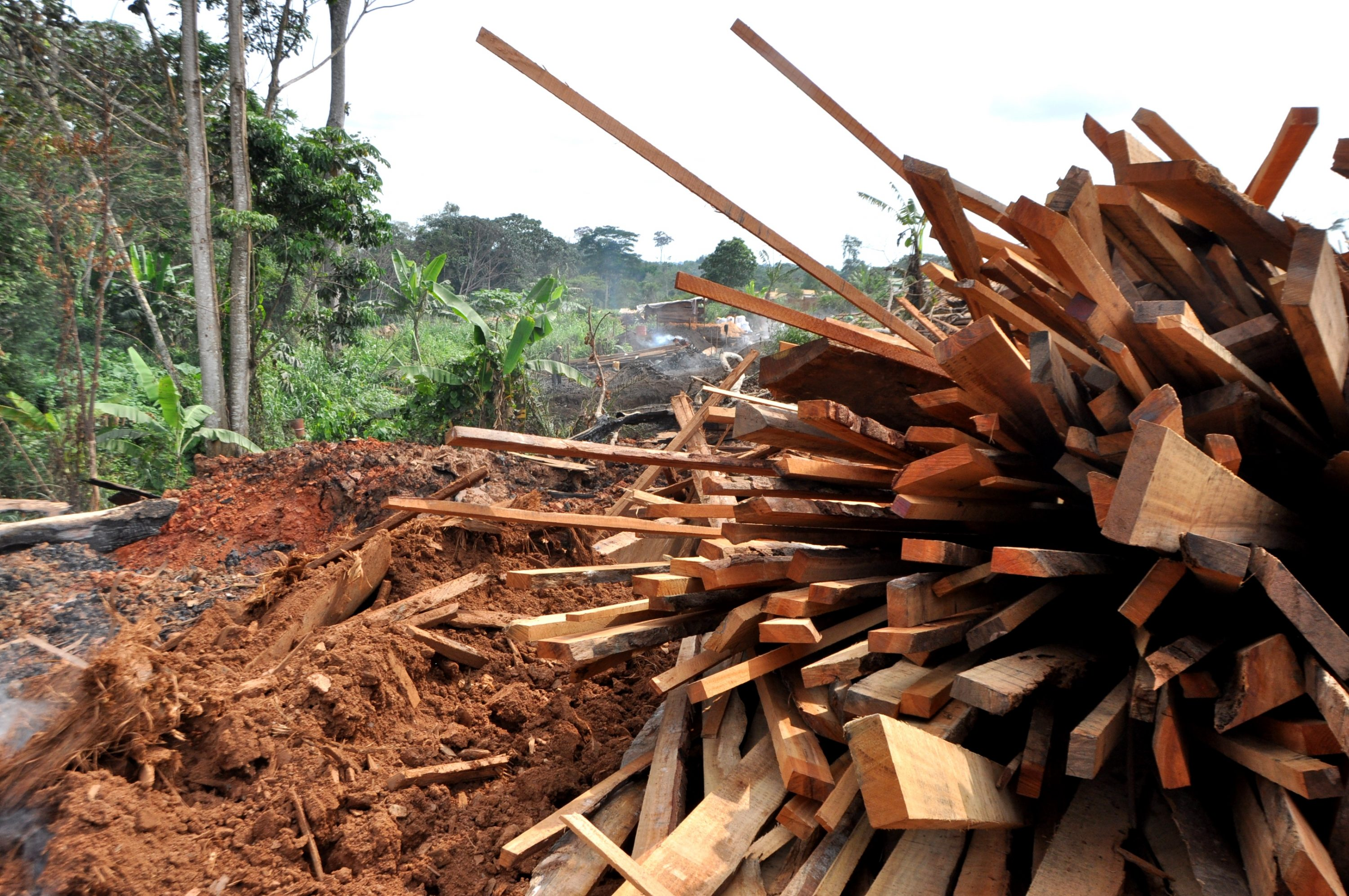 12 - alternatives to make a living - charcoal production - transform timber waste to charcaol (3) wood for charcoal