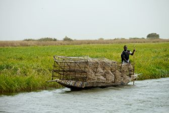 The Key to the SDGs: Conserving and Restoring Wetlands