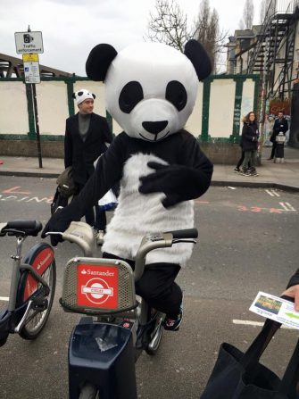 Could this Cheeky Panda save the world ?