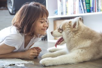 A Dog's Job: The Incredible Benefits of Pet Therapy