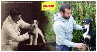 Neo-Lupus: Heritage and History in Animal Care
