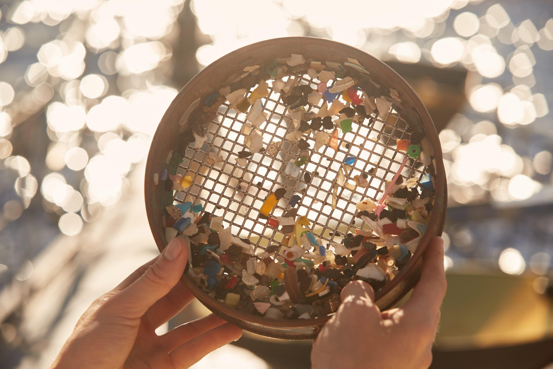 Plastic pieces - photo by Studio Swine