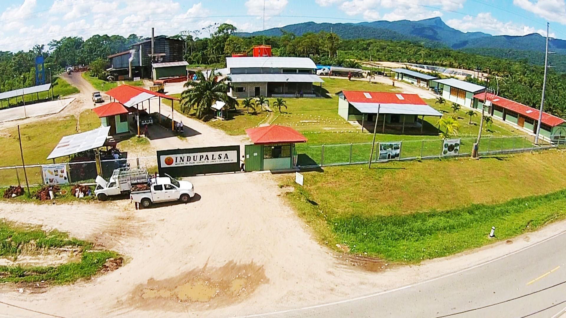 Indupalsa cooperative palm oil plant Peru
