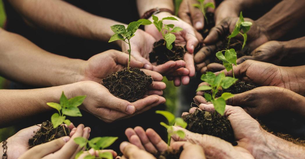 agricoltura sociale testata