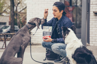 Wilder & Harrier: Innovative and Sustainable Pet Food