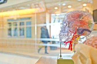 The Neuroscience of Philanthropy